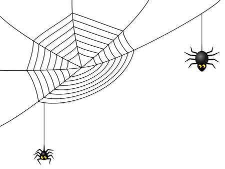 spider web: vector illustration of a spider web