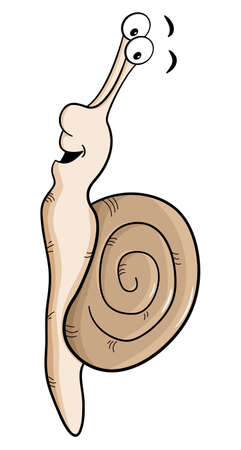 crawling creature: vector illustration of a cartoon snail with snail shell