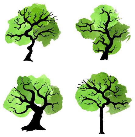 feuille arbre: illustration vectorielle d'arbres verts abstraits avec des touches de couleur