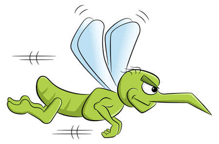 vector illustration of a bloodthirsty cartoon mosquito o white Illustration