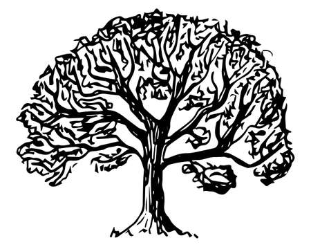 vector illustration of a deciduous tree sketched by hand