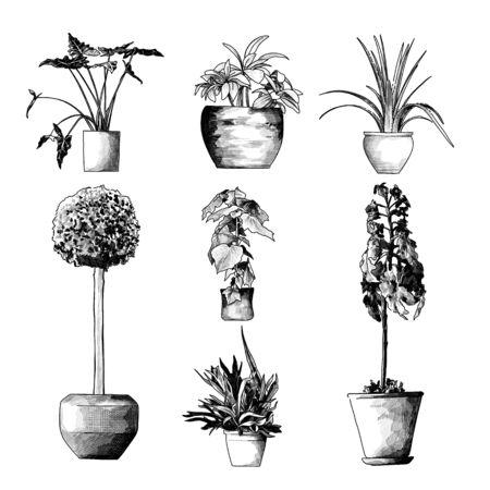 set of floor colors for interior, sketch vector graphics monochrome illustration on white background Illusztráció