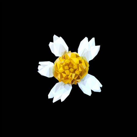 chamomile flower top view stylized from triangles colored