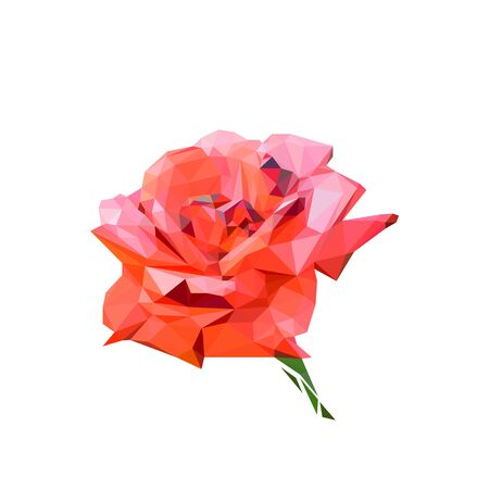 a blooming red rose Bud stylized from triangles colored Illusztráció