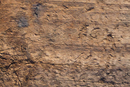 The background of the tree for text. The texture of the old burnt wood with multiple damage and cracks. Baked Japanese technology of construction materials. Artificially aged boards.