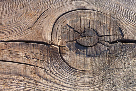 The texture of the cut wood is light brown. A knot on the wooden surface close-up. Burnt wood by Japanese technology for use in interior and exterior designs. Annual rings of trees with cracks. 스톡 콘텐츠