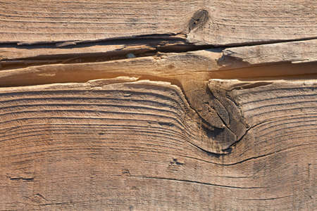 The texture of the cut wood is light brown. A knot on the wooden surface close-up. Burnt wood by Japanese technology for use in interior and exterior designs. Background of wood with growth rings.