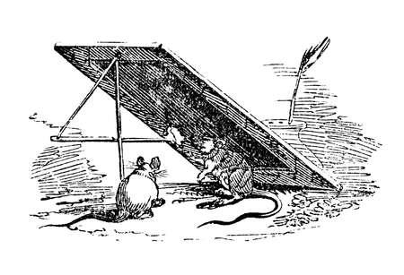 マウス トラップの 19 世紀の彫刻 写真素材