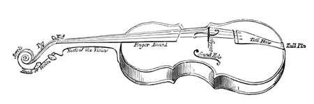 19e-eeuwse gravure van de delen van een viool