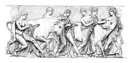 sacrifices: Victorian engraving of afrieze depicting an ancient Greek religious sacrifice. Digitally restored image from a mid-19th century Encyclopaedia.