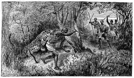 attacking: Victorian engraving of a leopard attacking an indigenous hunter