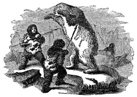 Victorian engraving of inuit hunting polar bear Фото со стока - 42495332