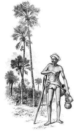 anthropology: Victorian engraving of a palm tree climber, Sri Lanka. Digitally restored image from a mid-19th century Encyclopaedia. Stock Photo