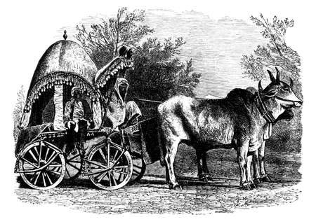bullock: Victorian engraving of a    bullock carriage, India. Digitally restored image from a mid-19th century Encyclopaedia.