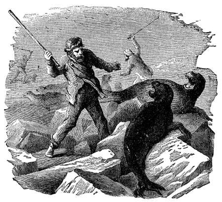 hunters: Victorian engraving of Arctic seal hunters