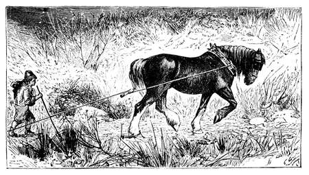 horse pull: 19th century engraving of a medieval farming scene