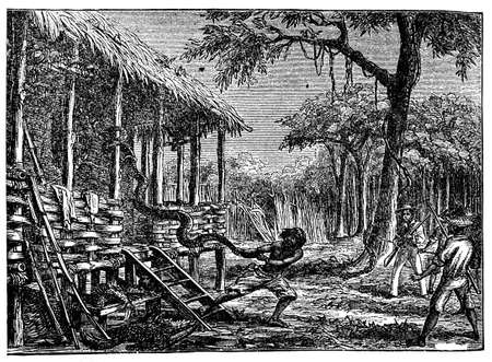 anthropology: Victorian engraving of a huge snake in a jungle village