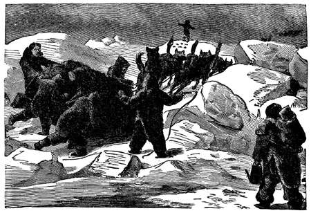 Victorian engraving of an Arctic dogsled team