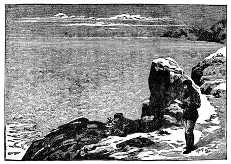 arctic: Victorian engraving of an Arctic survey expedition
