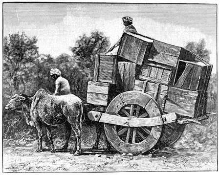 bullock: Victorian engraving of a  bullock cart, India. Digitally restored image from a mid-19th century Encyclopaedia.