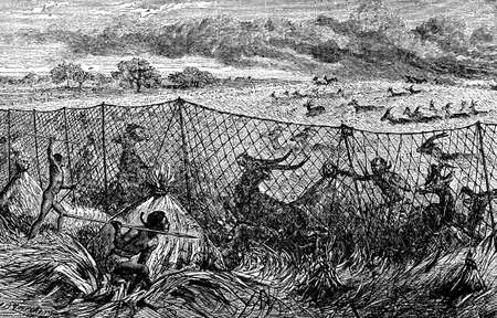 anthropology: Victorian engraving of indigenous Africans hunting game