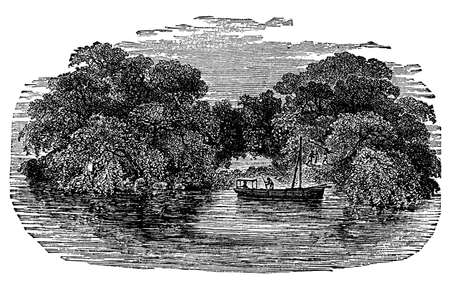 lake shore: Victorian engraving of an African jungle and river
