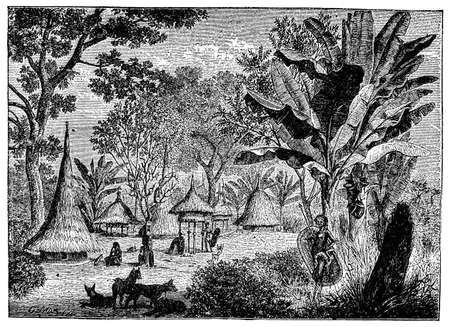 african village: Victorian engraving of an African jungle village