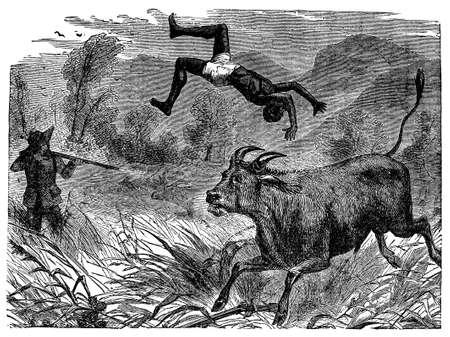 other keywords: Victorian engraving of a safari big game hunt
