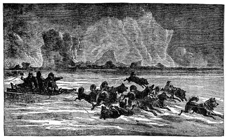 huskies: Victorian engraving of an Arctic dogsled team