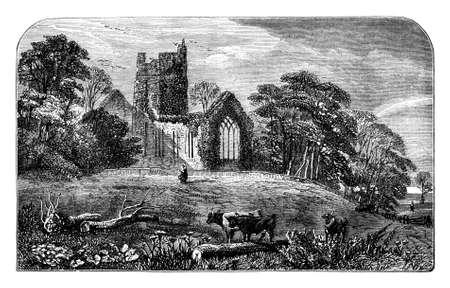 19th century engraving of Muckross Abbey, Killarney National Park, Ireland