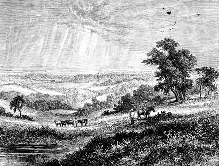 weald: 19th century engraving of The Weald, Sussex, UK