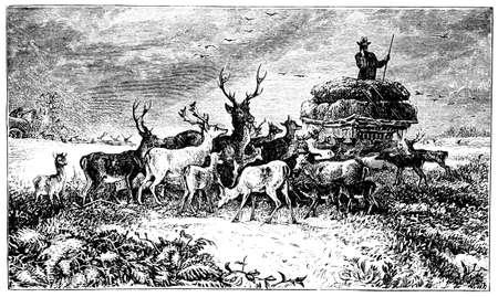 moor: 19th century engraving of a farm scene, Darbyshire, UK