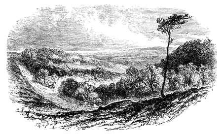 19e-eeuwse gravure van het platteland van Sussex, UK Stockfoto