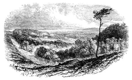 sussex: 19th century engraving of the Sussex countryside, UK