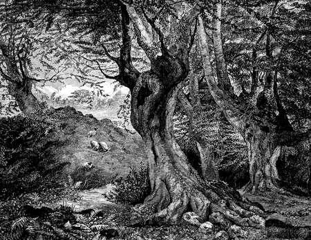 고대 숲의 19 세기 조각