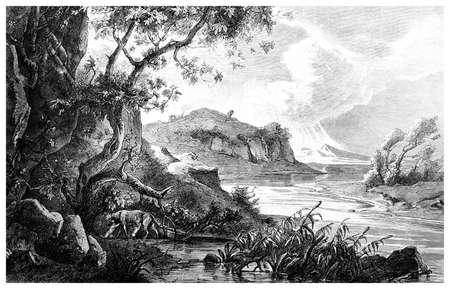 19e-eeuwse gravure van Remus en Romulus zogen van de Wolf