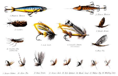 19e eeuwse illustratie van een aantal zalm en forel vliegen Stockfoto