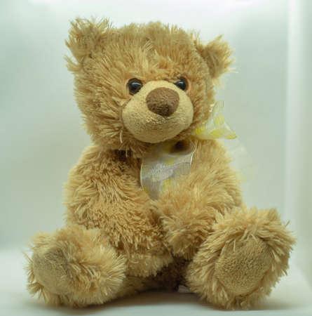 Soft toy bear on a white background 免版税图像