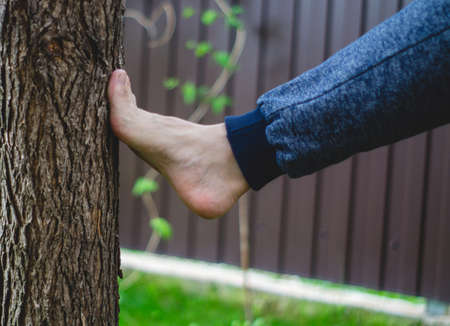 Kicking a foot in a tree bark