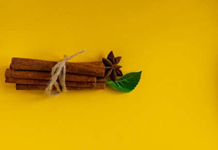 bunch of cinnamon sticks on colored background with green leaf and star anise