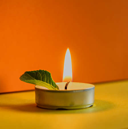 Burning non-scented candle with green leaf on colored background