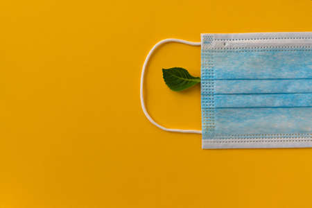 Blue mask from a virus on a yellow background with a green leaf lying on it