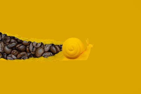 A yellow snail is crawling on a paper sheet on which you can see coffee beans