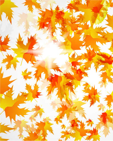 Abstract vector autumn background photo