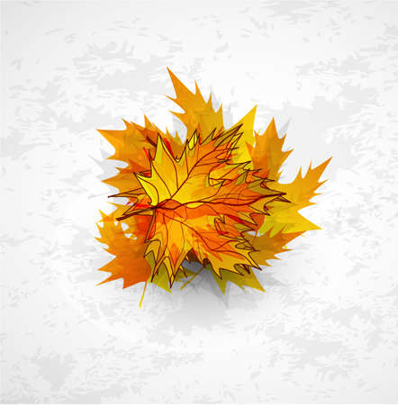 Vector autumn leaves abstract background Stock Vector - 9840492