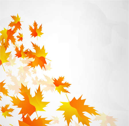 Vector autumn leaves abstract background Stock Vector - 9840382