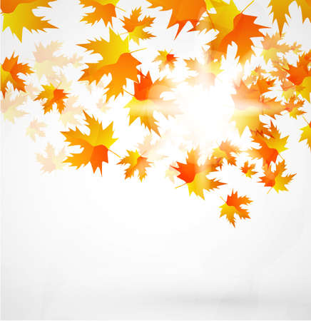 Vector autumn leaves abstract background Stock Photo - 9840340