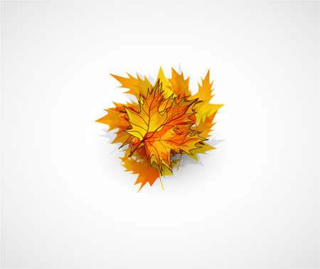 Vector autumn leaves abstract background photo