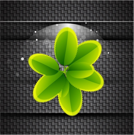 lightweight: Leaves on carbon background