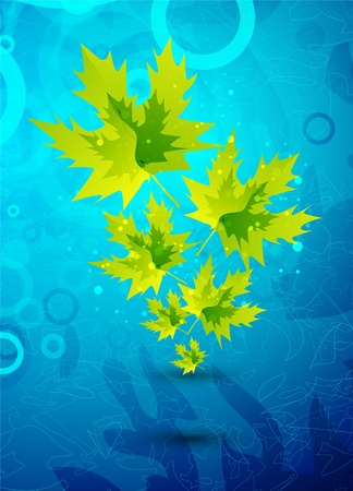 Yellow leaves on blue background photo